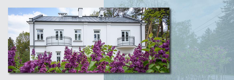 Na pierwszym planie kwitnące, fioletowe bzy. W tle willa Bzów - dwupiętrowy, biały budynek.